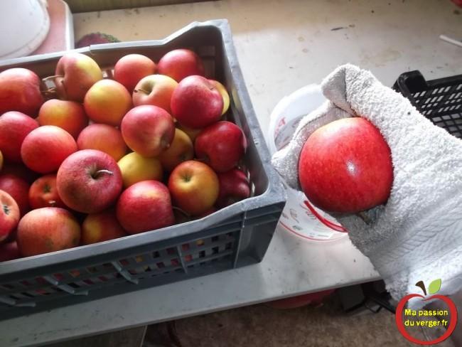 Comment conserver les pommes en hiver.
