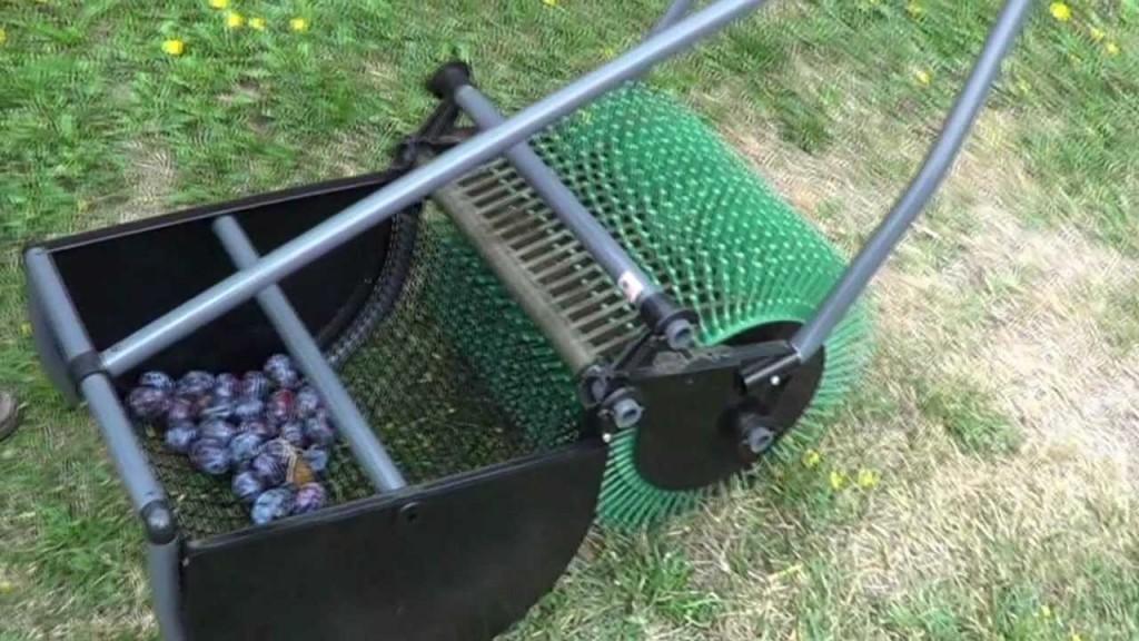 Le ramassage des prunes, noix, noisettes, avec cette ramasseuse à pousser