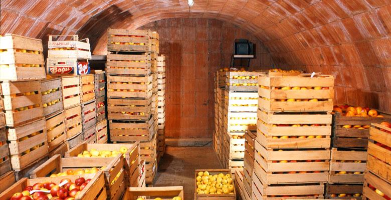 obstkeller_ bonne cave à fruits, pour la conservation