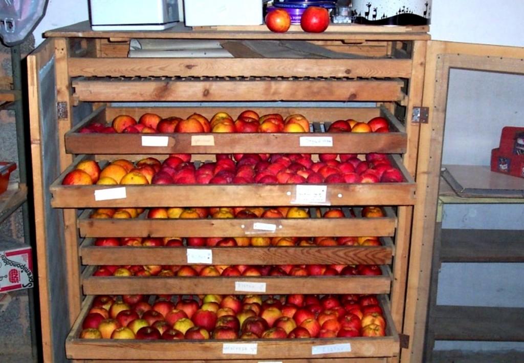 Identification des variétés de pommes au fruitier