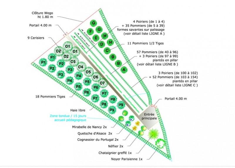 Plan de vergers et petits fruits, pour créer un verger