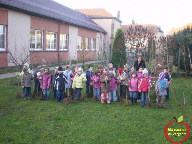 plantation d'arbre fruitier à l'école