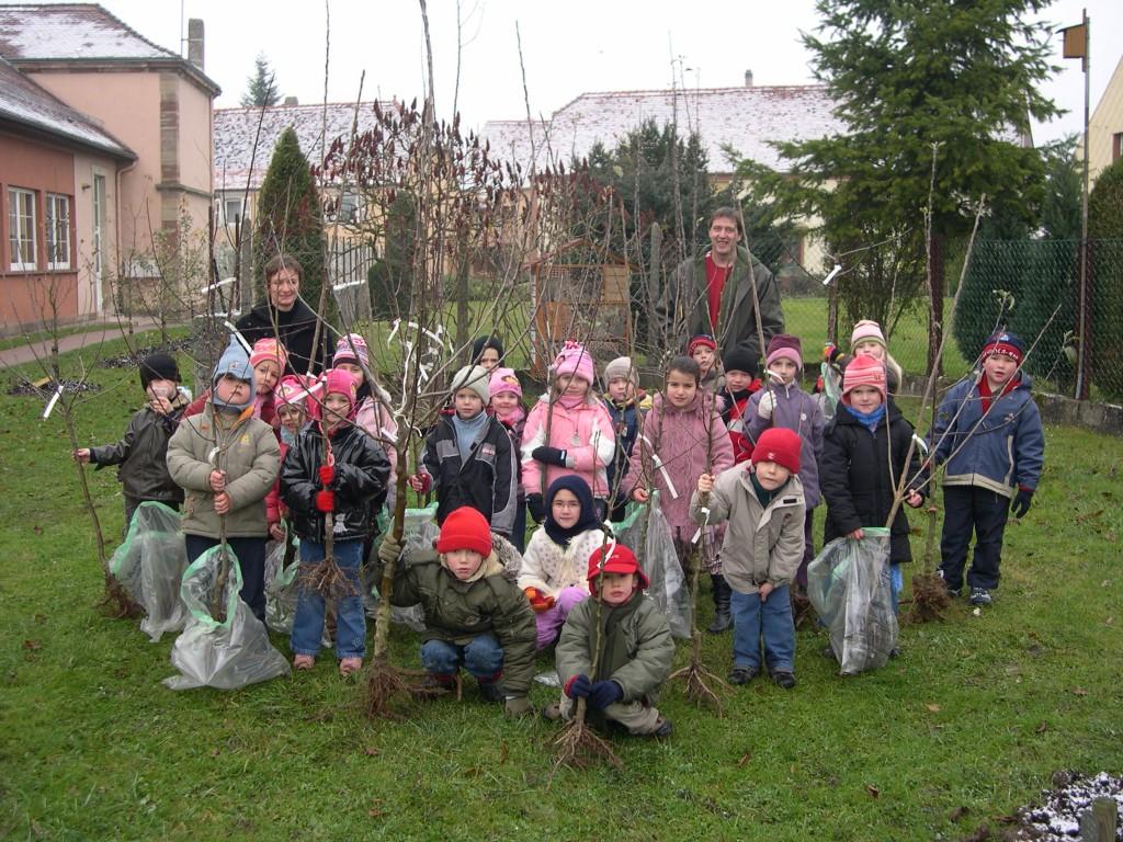 Plantation 17.11.2007 040