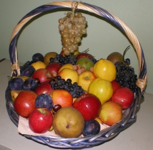 panier fruit 1