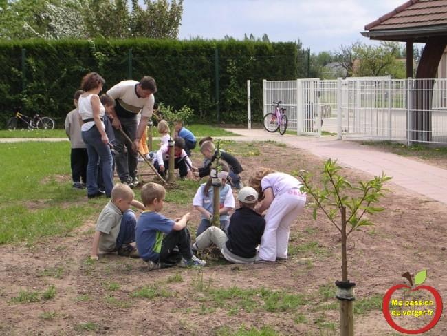 initiation des élèves à l arboriculture