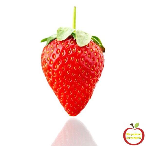 tableau-fraise
