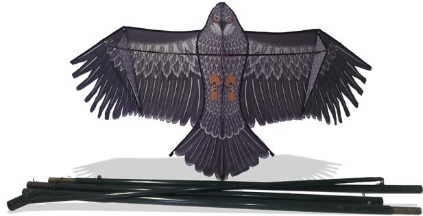 cerf-volant-effaroucheur-rapace triangle pour la protection des cerises