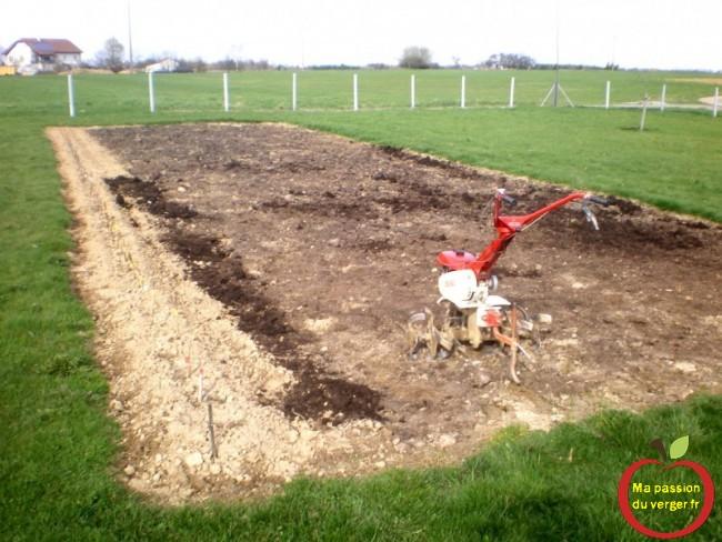 Planter mes pommes de terre ma passion du verger - Le fumier de cheval est il bon pour le jardin ...