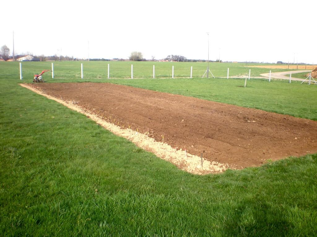 fraisage du champs à pommes de terre avec le motoculteur