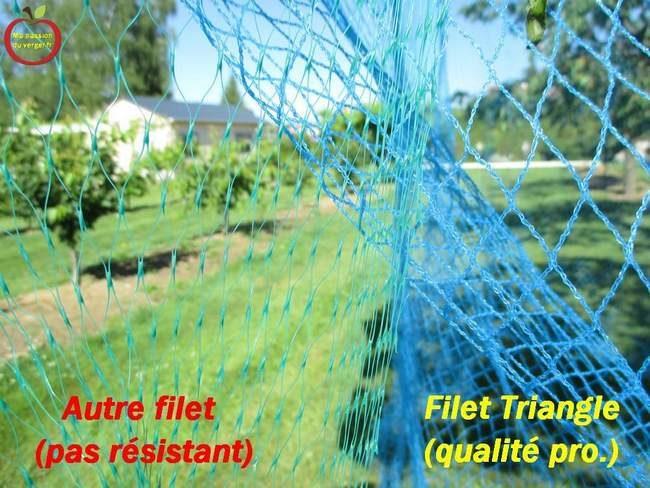 Quel filet choisir pour la protection des cerises- filet qualité professionnel pour la protection des fruits- filet anti-oiseaux professionnel - filet protection des fruits contre les oiseaux-