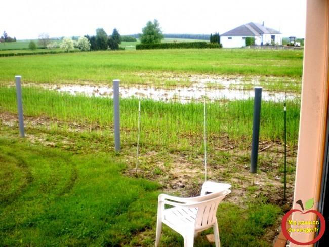 année humide au verger