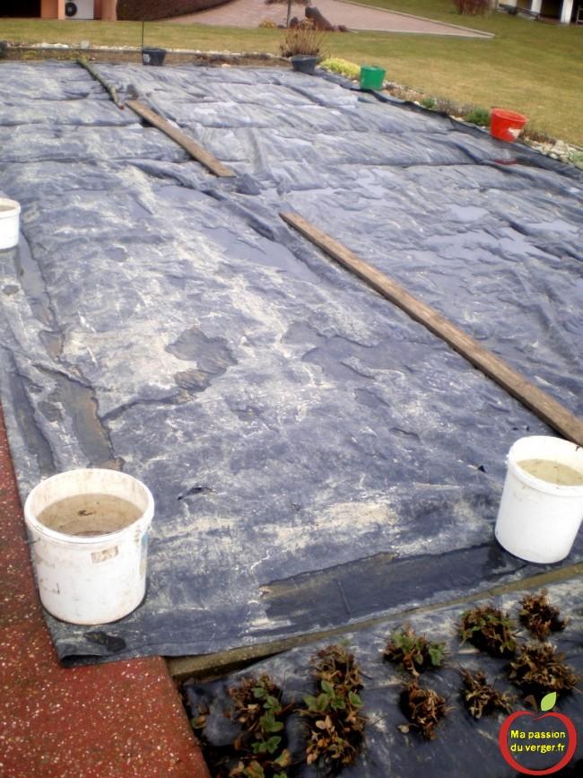 jardin trop humide- potager trop humide-