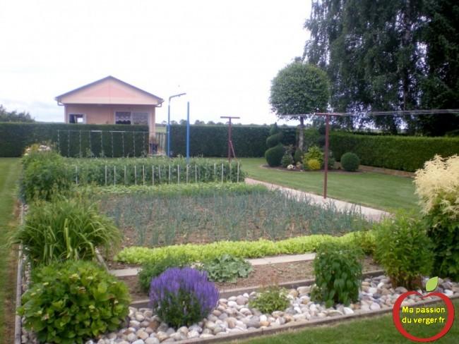 - regrevudnoissapamegres - beau potager bio- les beaux légumes de notre jardin