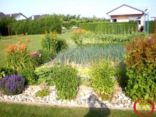 potager sans permaculture- très beau potager bio familiale-