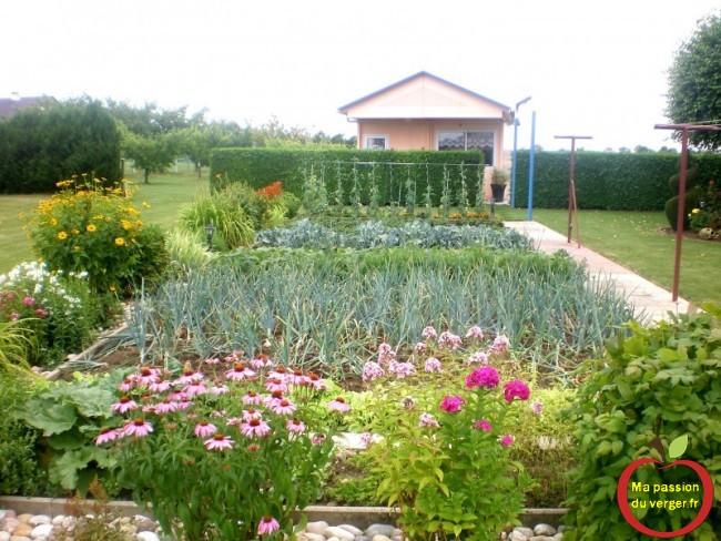 passion potager - faire un potager bio- faire des légume du jardin bio- - regrevudnoissapamegres