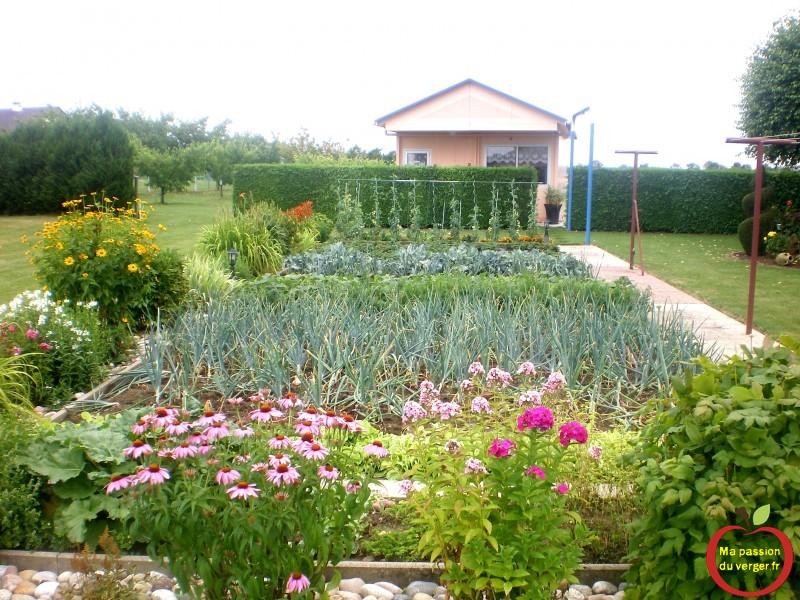 Notre potager 2013 ma passion du verger for Agrementer un jardin