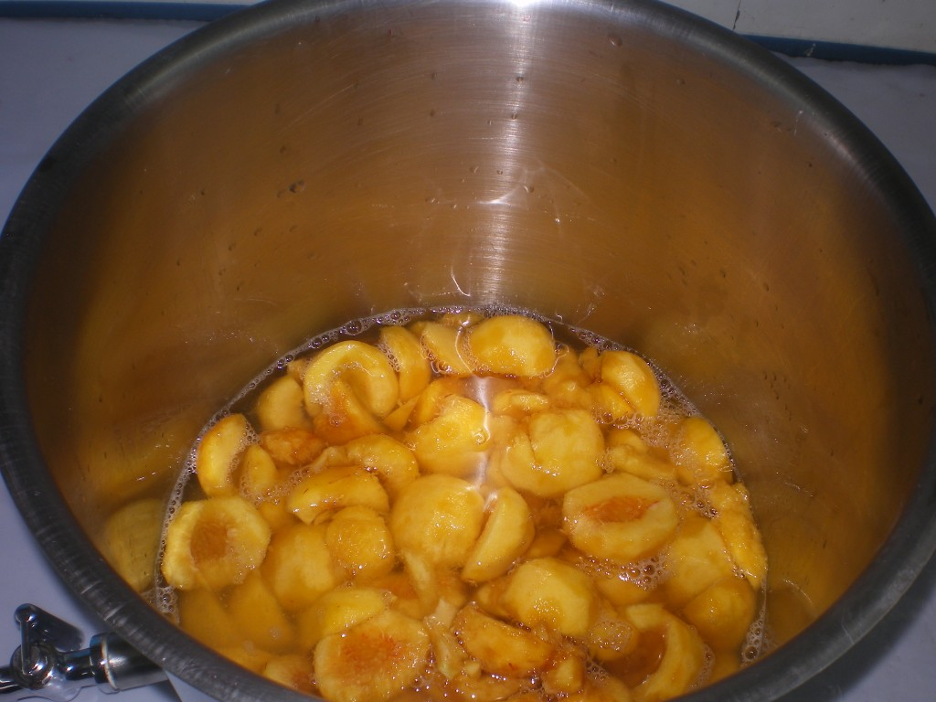 Mettre un seau de 5 litres de pêches, dans la marmite avec 2,5 litres d'eau.