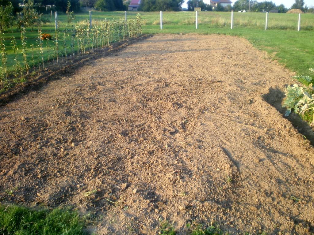 potager après la récolte des pommes de terre