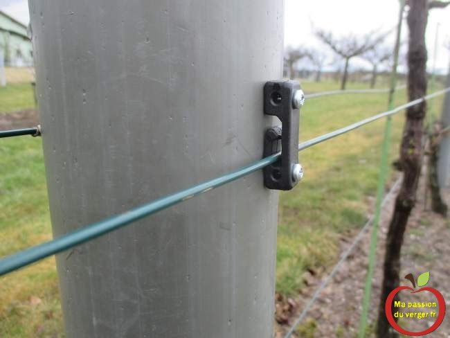 clip haute résistance pour fixation fils de palissage.