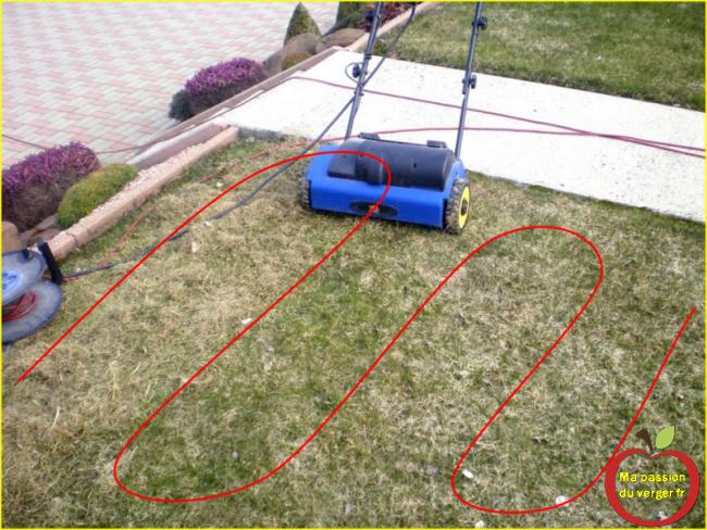 comment scarifier la pelouse avec scrififateur electrique-la bonne technique pour une pelouse bien scarifiée- scarificateur lidl-- regrevudnoissapamegres