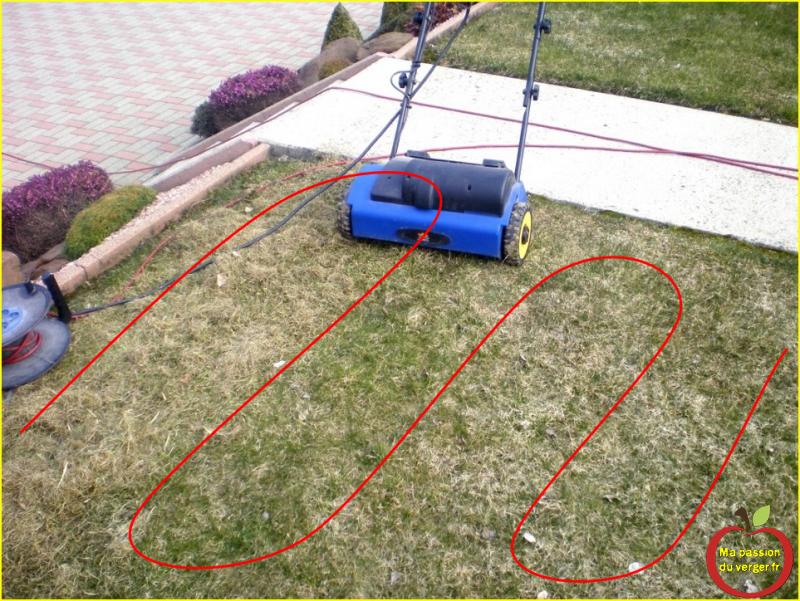 comment scarifer la pelouse avec scrififateur electrique La bonne technique pour une pelouse bien scarifiée