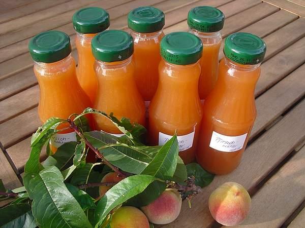Nectar de pêches ou abricots ou nectarines en bocaux. Faire un smoothie maison