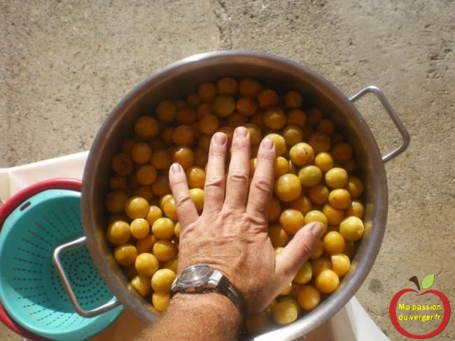 Remplir la marmite de mirabelles et tasser légèrement.