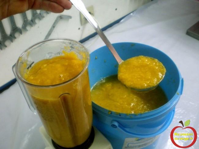 Faire un smoothie maison -Mettre la pulpe de mirabelles, dans un mixeur ou blender, pendant 5 minutes. -regrevudnoissapamegres