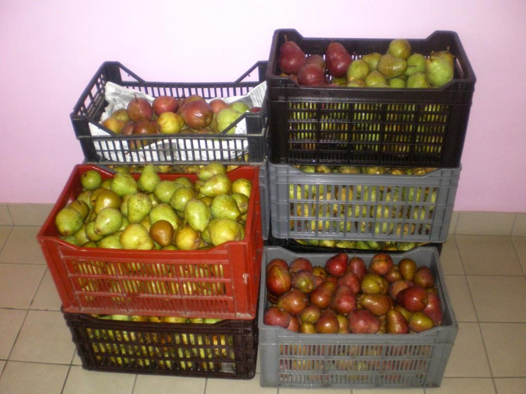 Comment faire murir les poires au fruitier, a la cave, dans la cuisine,...