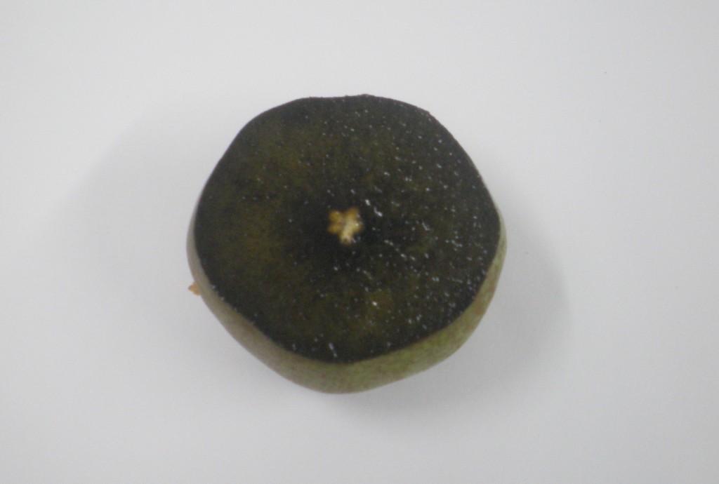 La poire est encore verte, de l'amidon sur toute la surface, donc pas assez de sucre.
