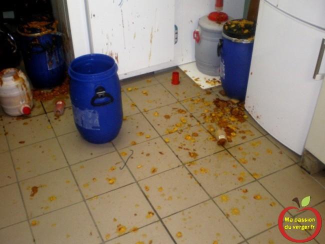 attention au remplissage des fûts de fermentation - pour ne pas déborder ou exploser mirabelles - ne pas mettre trop de fruits dans les fûts