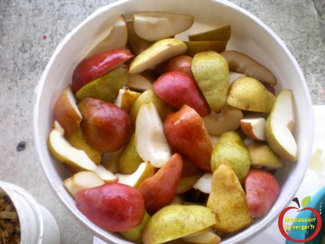 Sélectionnez uniquement les meilleurs fruits pour obtenir ensuite la meilleure eau-de-vie de poire williams ma passion du verger.
