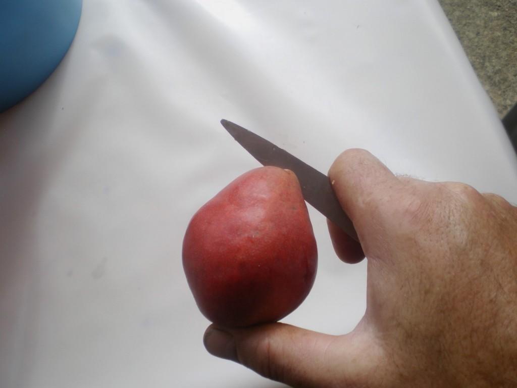 couper la poire williams en deux