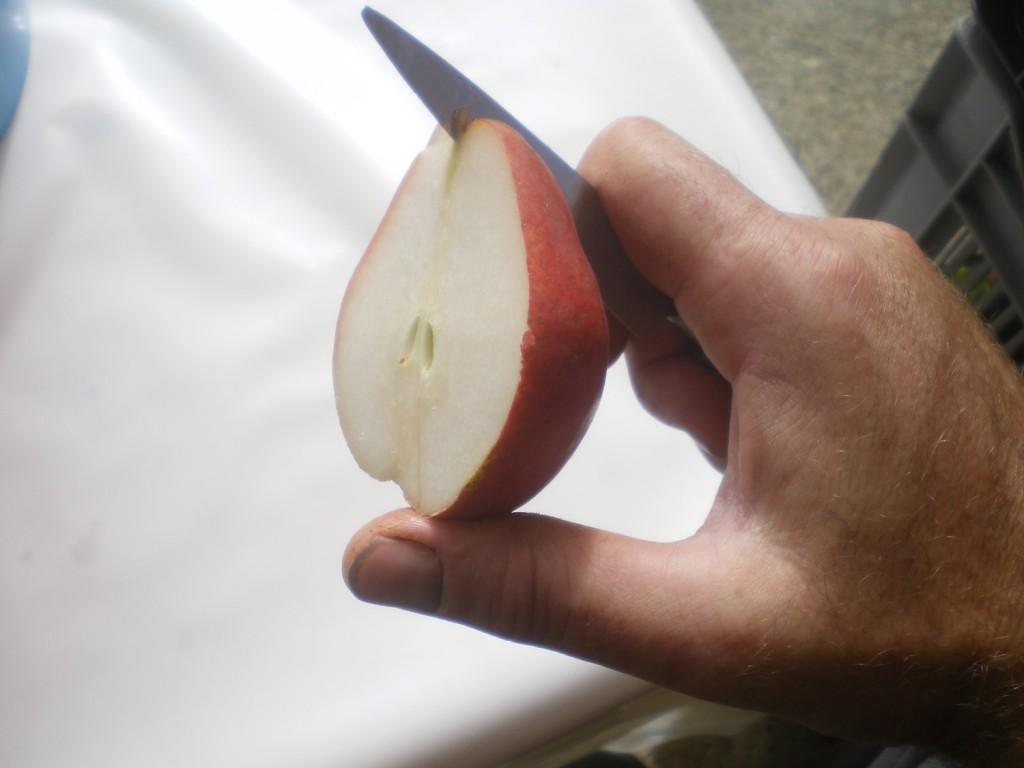 couper chaque moitier de poire en deux