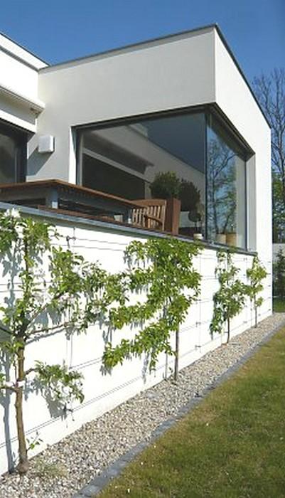 palmette fruitier sur façade maison_fassadengruen_spalierobst_