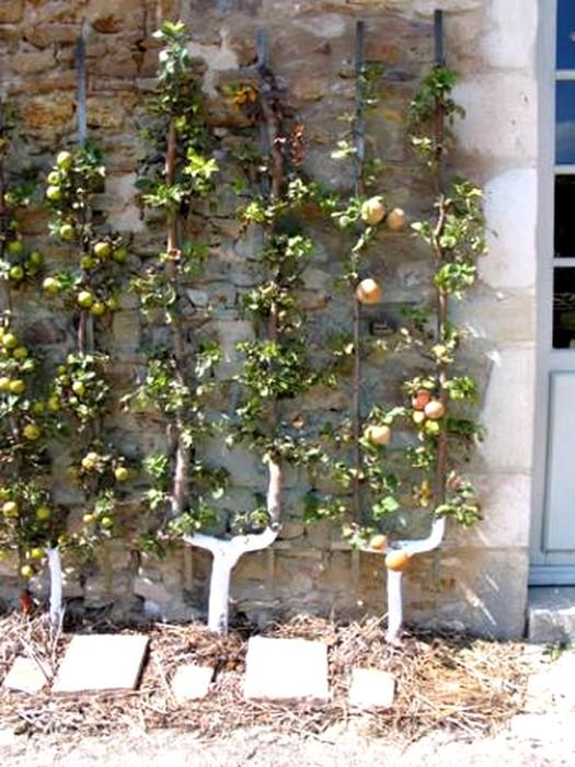 Palmette en U simple sur façade de maison