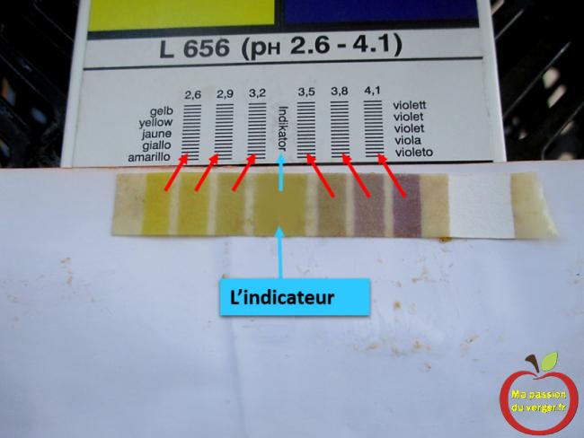 test de ph bon sur poire williams fermentation controlee mout mise en fut