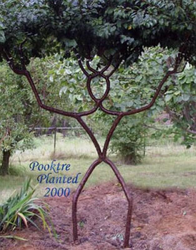 arborsculpture arbre original en homme