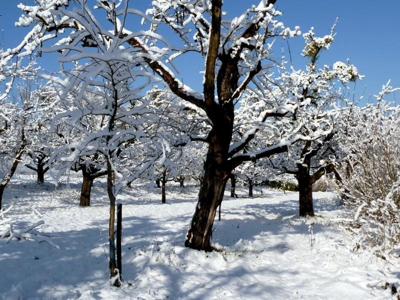 Alt-und-Jung-im-Schnee1