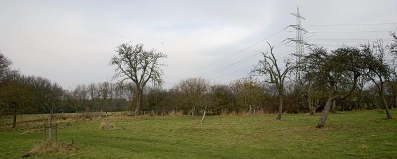 IMG_7946-panorama