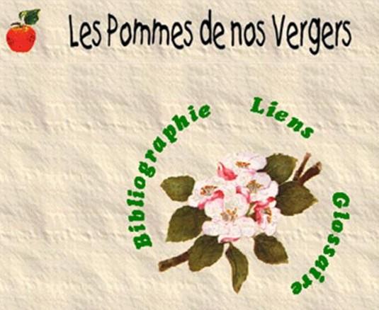 I-Grande-6385-les-pommes-de-nos-vergers.net