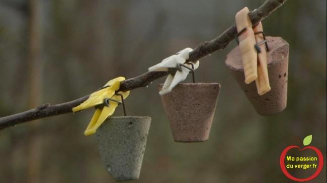 Pour arquer une grosse branche, il faut en mettre plusieurs poids. - regrevudnoissapamegres