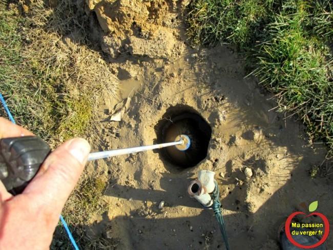 vider l'eau dans les trous pour les poteaux de palissage