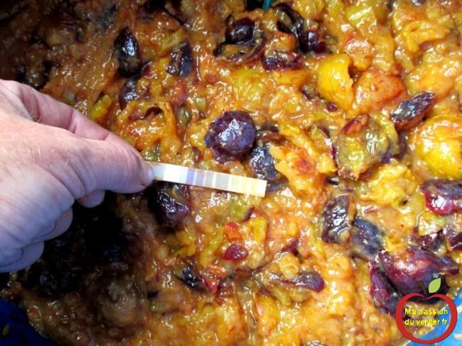 tester le ph de la purée de quetsche- mise en fût des fruits pour alcool - gnole- schnaps - fruits alcool - quetsche ou prune pour alcool
