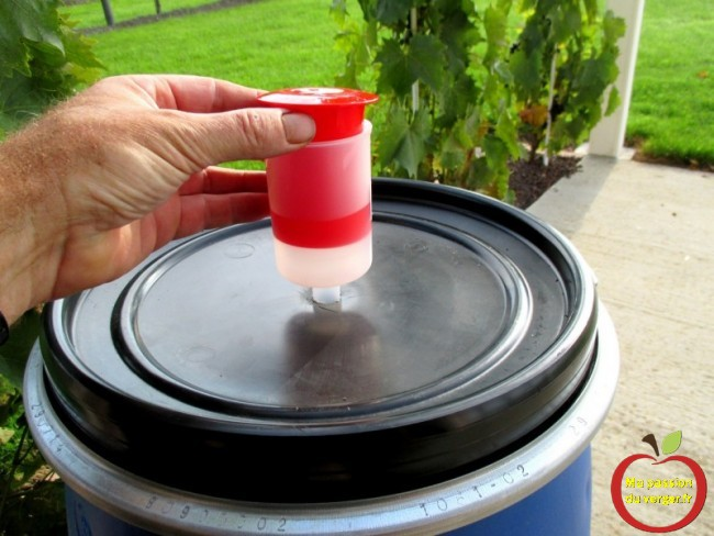 mise en place du barboteur pour une meilleur fermentation - fermentation des fruits sans oxygène- fermentation des fruits pour un bon schnaps