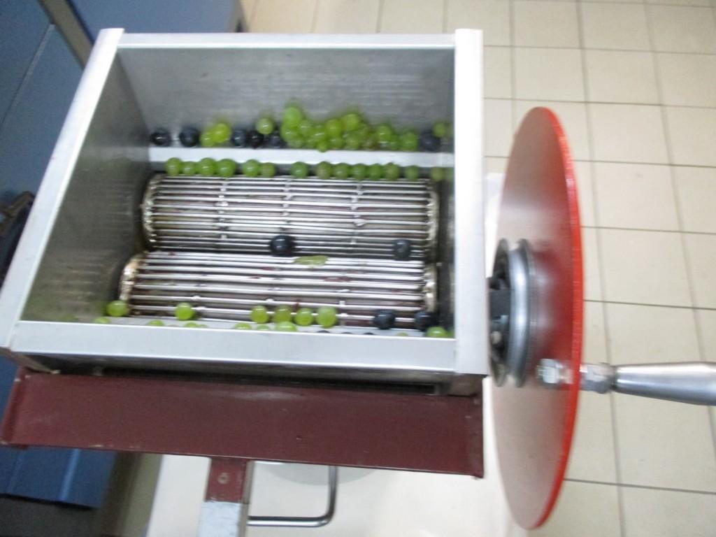 Réaliser son vin naturel bio -ce fouloir manuel, peut également être entrainé, par un moteur, pour les plus grandes quantités.