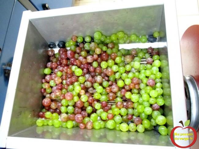 Pour faire un bon jus de raisin, on peut mélanger plusieurs variétés.