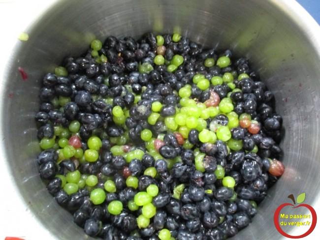 Après le foulage du raisin, avec le fouloir manuel.