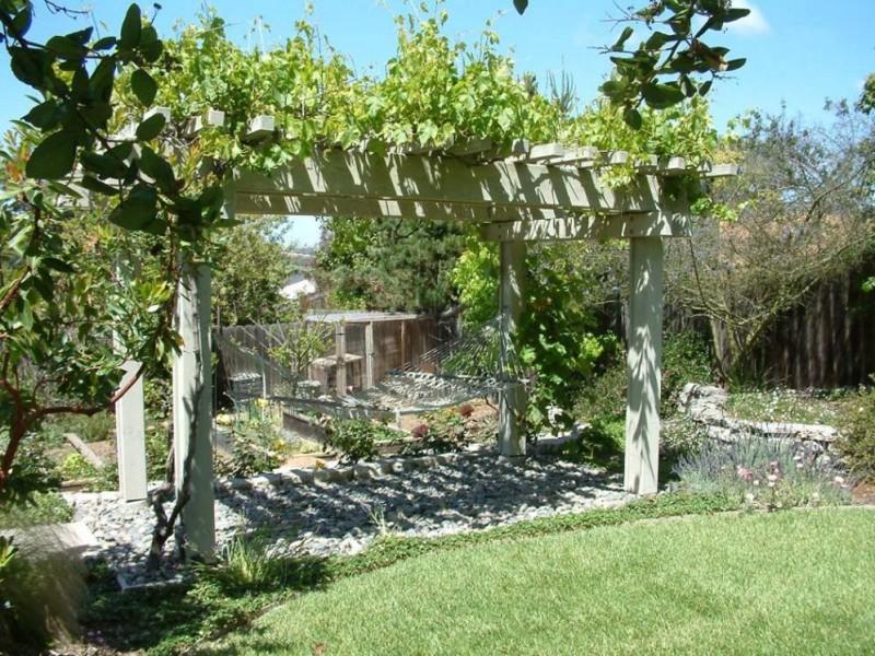 treille pour vigne avec chevron en bois