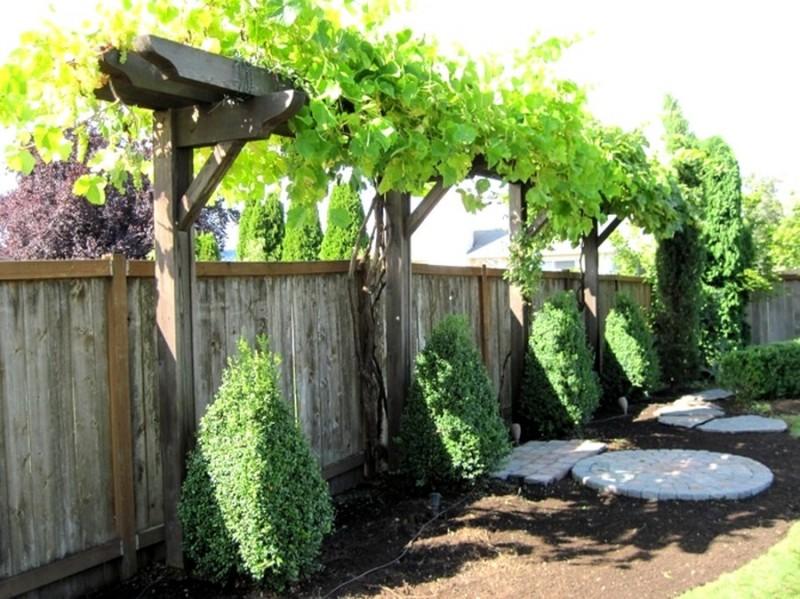 treille a vigne en décoration de votre jardin